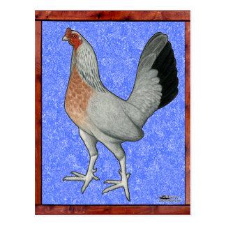 Framed Game Hen Postcard