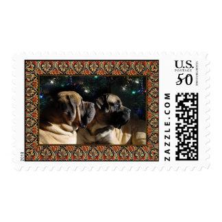 Framed Mastiff Pair Postage