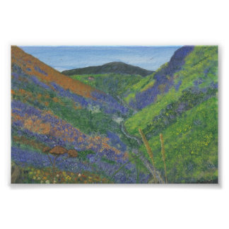 Framed Print of Spring Time in the Mountains