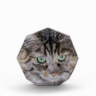 Fran the Tabby Cat Award