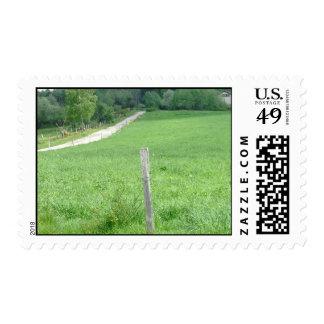 France 16 postage stamp