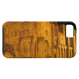 France, Avignon, Provence, Papal Palace at night 2 iPhone 5 Covers