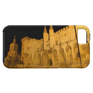 France, Avignon, Provence, Papal Palace at night iPhone SE/5/5s Case