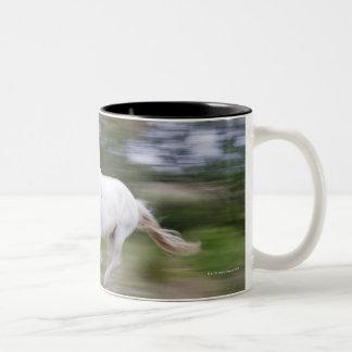 France, Bouches du Rhone, Natural Regional Park 2 Two-Tone Coffee Mug