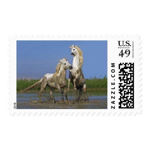 France, Bouches du Rhone, Natural Regional Park Postage