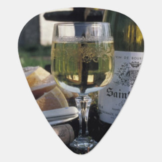 France, Burgundy, Chablis. Local wine and Guitar Pick