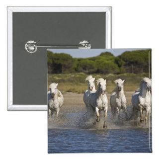 France, Camargue. Horses run through the estuary 2 Pinback Button