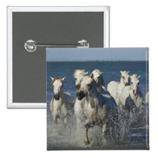 France, Camargue. Horses run through the estuary 4 Pinback Button