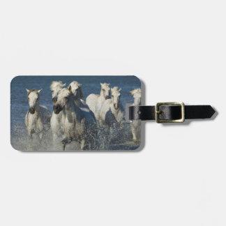 France, Camargue. Horses run through the estuary 4 Tag For Luggage