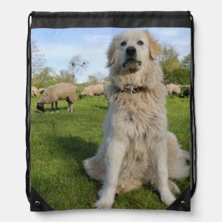 France, Centre, Chatillon-sur-Loire. Dog Drawstring Bag