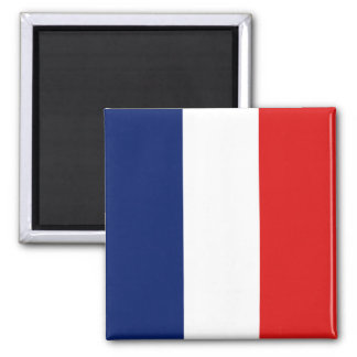 France Flag Magnet