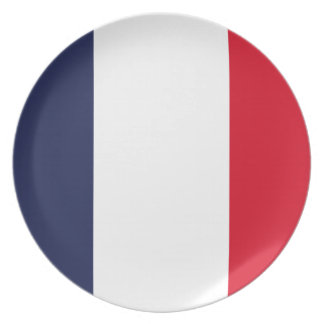 France flag melamine plate