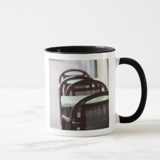 FRANCE, French Alps (Haute, Savoie), ANNECY: Mug