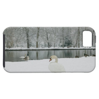 FRANCE, French Alps (Isere), VIZILLE: Chateau de iPhone SE/5/5s Case