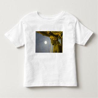 France, Ile de France, Paris, Concorde place, 2 Toddler T-shirt