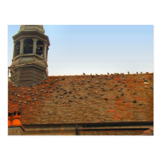 France, Jura, Arbois, Pigeons on the roof Postcards