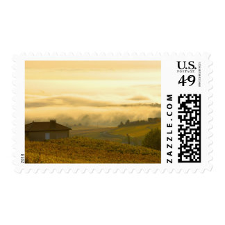 France, Maconnais Region, Autumn morning fog in Postage Stamps