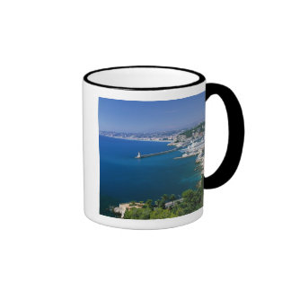 France Nice aerial view of the port Mugs