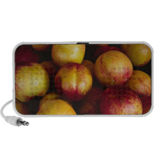 France, Nice, Plums at the outdoor market Travel Speakers