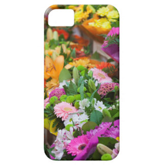 France, Nord, French Flanders, Lille, Wazemmes iPhone SE/5/5s Case