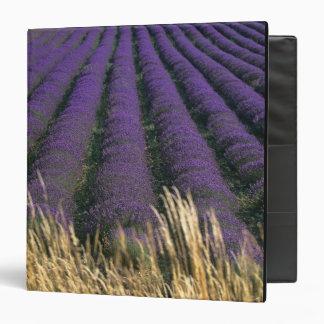 France, PACA, Alpes de Haute Provence, 2 Vinyl Binder