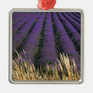 France, PACA, Alpes de Haute Provence, 2 Metal Ornament