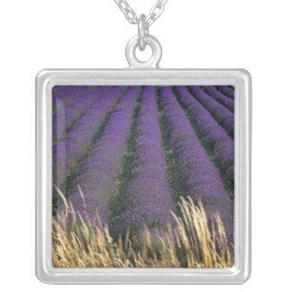 France, PACA, Alpes de Haute Provence, 2 Jewelry