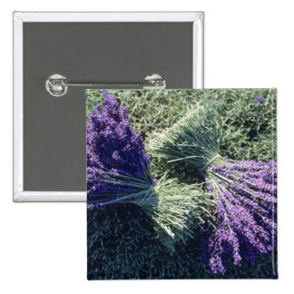 France, PACA, Alpes de Haute Provence, Bunches 2 Inch Square Button