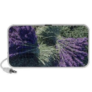 France, PACA, Alpes de Haute Provence, Bunches Laptop Speaker