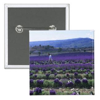 France, PACA, Alpes de Haute Provence, Manual 2 Inch Square Button