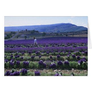 France, PACA, Alpes de Haute Provence, Manual Card