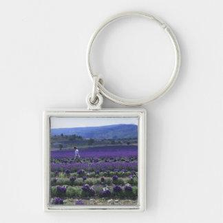 France, PACA, Alpes de Haute Provence, Manual Keychain