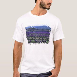France, PACA, Alpes de Haute Provence, Manual T-Shirt