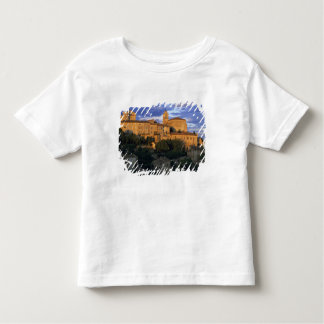 France, PACA, Vaucluse, The village in sunset Toddler T-shirt