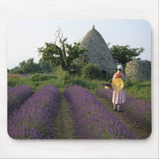 France, PACA, Vaucluse, Woman in a lavender Mouse Pad
