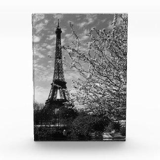 France Paris Eiffel tour 1970 Award