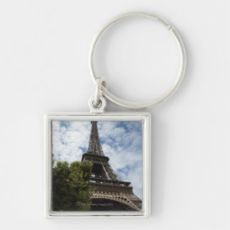 France, Paris, Eiffel Tower and tree, low angle Key Chain