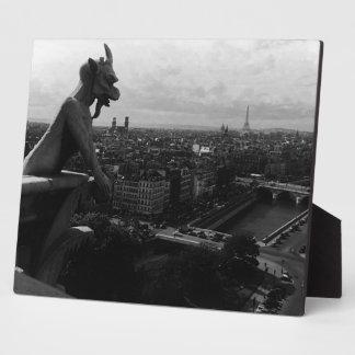 France Paris Notre Dame Cathedral the devil 1970 Display Plaque