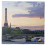 France,Paris,tour boat on River Seine,Eiffel Tiles