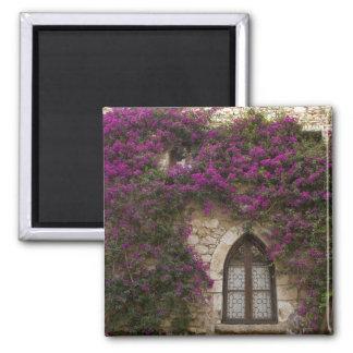 France, Provence, Eze. Bright pink Magnet