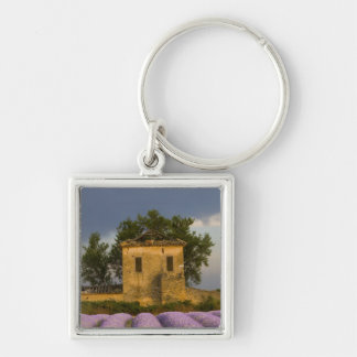France, Provence. Field of lavender and Key Chain