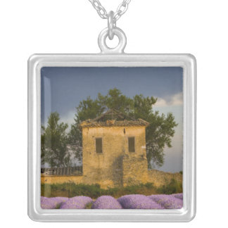 France, Provence. Field of lavender and Silver Plated Necklace