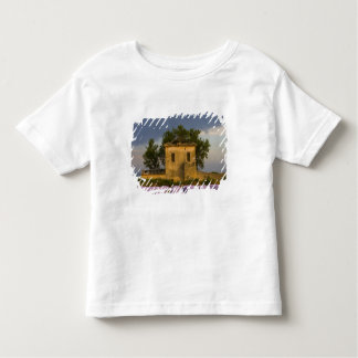 France, Provence. Field of lavender and T Shirt
