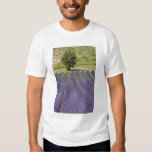 France, Provence. Rows of lavender in bloom. Tee Shirts