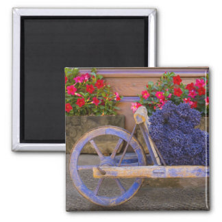 France, Provence, Sault. Old wooden cart with Fridge Magnet