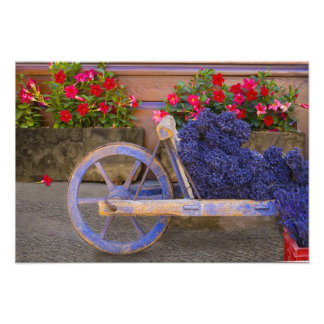 France, Provence, Sault. Old wooden cart with Photo Print