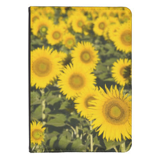 France, Provence, Valensole. Field of Kindle 4 Case