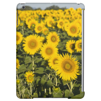 France, Provence, Valensole. Field of iPad Air Cases