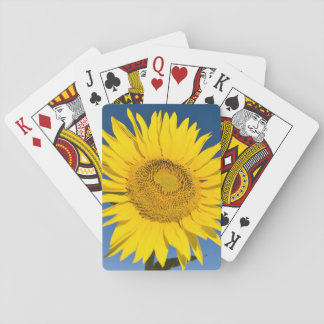 France, Provence, Valensole. Sunflowers stand Poker Cards