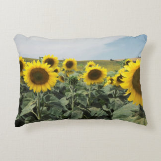 France Provence, View of sunflowers field Accent Pillow